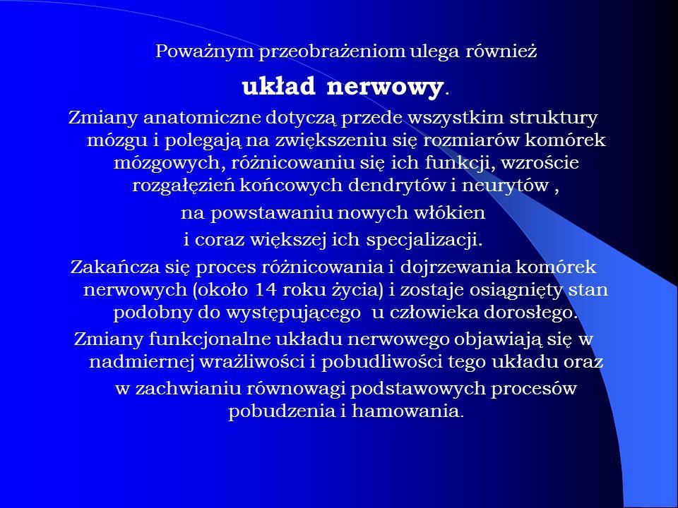 Poważnym przeobrażeniom ulega również układ nerwowy.