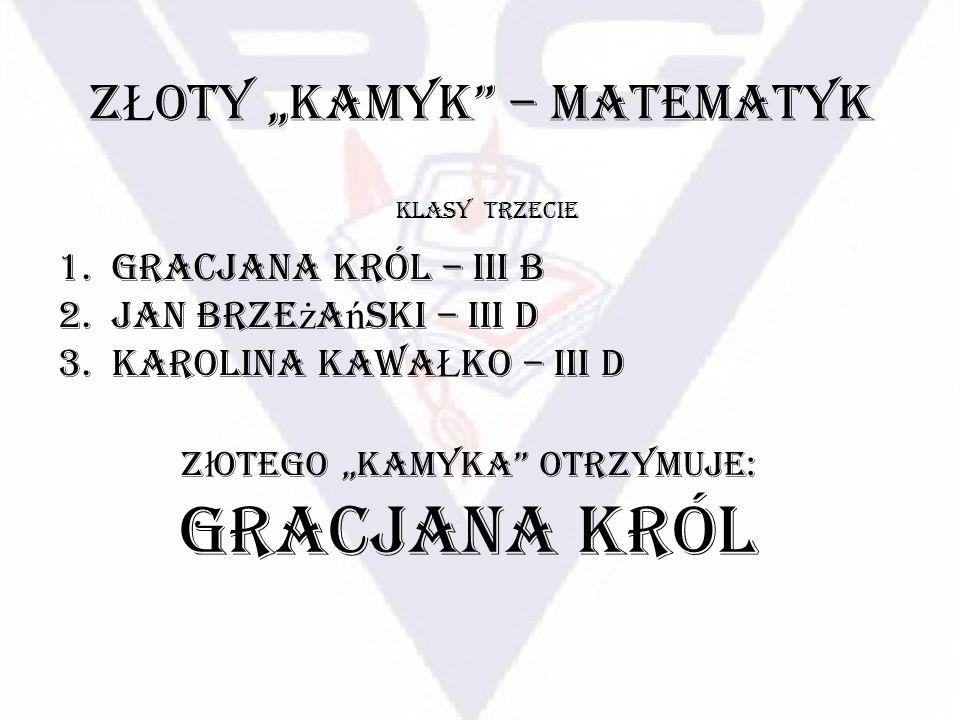 """ZŁOTY """"KAMYK – MATEMATYK"""