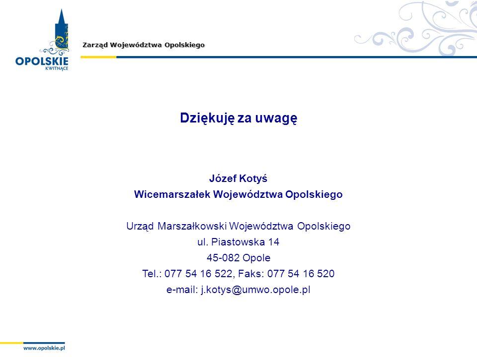 Wicemarszałek Województwa Opolskiego