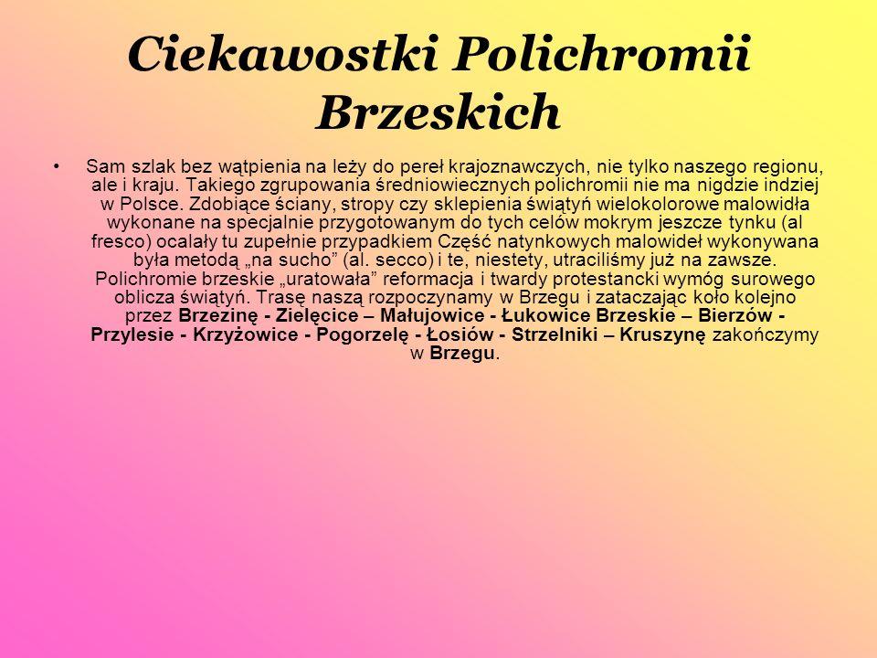 Ciekawostki Polichromii Brzeskich