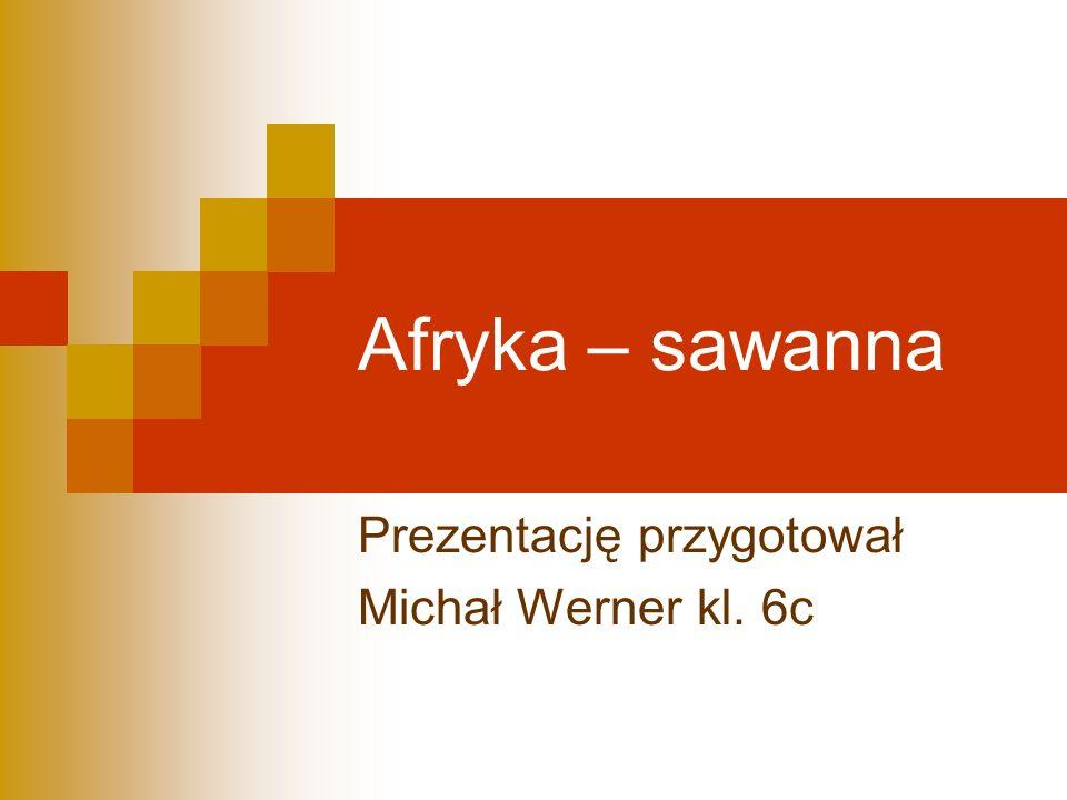 Prezentację przygotował Michał Werner kl. 6c