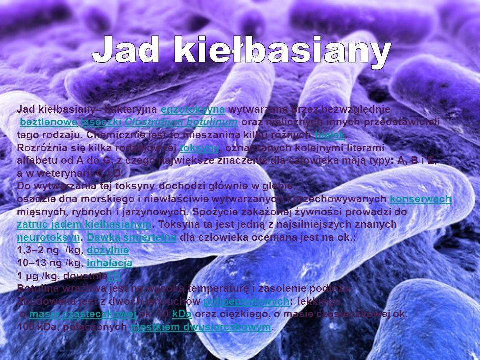 Jad kiełbasiany Jad kiełbasiany– bakteryjna egzotoksyna wytwarzana przez bezwzględnie.