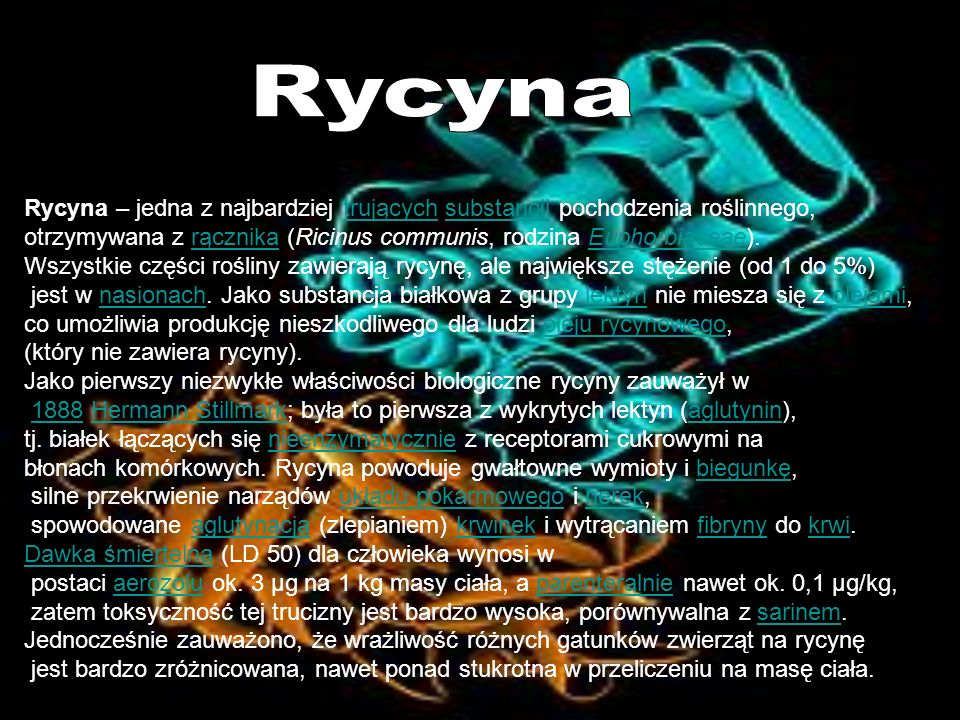Rycyna Rycyna – jedna z najbardziej trujących substancji pochodzenia roślinnego, otrzymywana z rącznika (Ricinus communis, rodzina Euphorbiaceae).