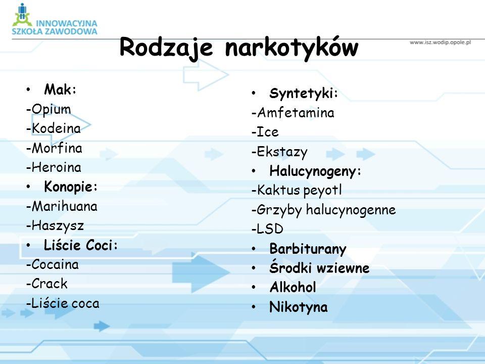 Rodzaje narkotyków Mak: Syntetyki: -Opium -Amfetamina -Kodeina -Ice