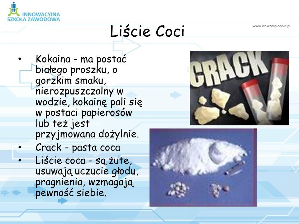 Liście Coci