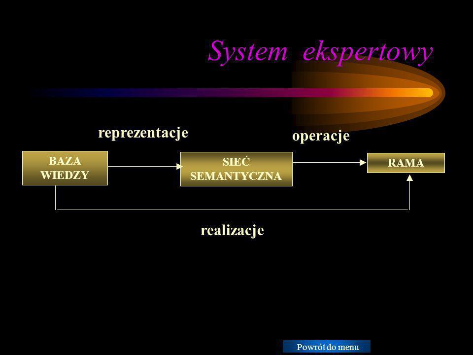 System ekspertowy Instrukcje: reprezentacje operacje realizacje