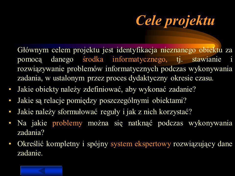 Cele projektu Instrukcje: