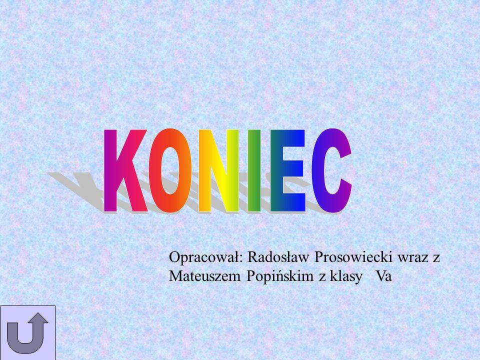 KONIEC Opracował: Radosław Prosowiecki wraz z Mateuszem Popińskim z klasy Va