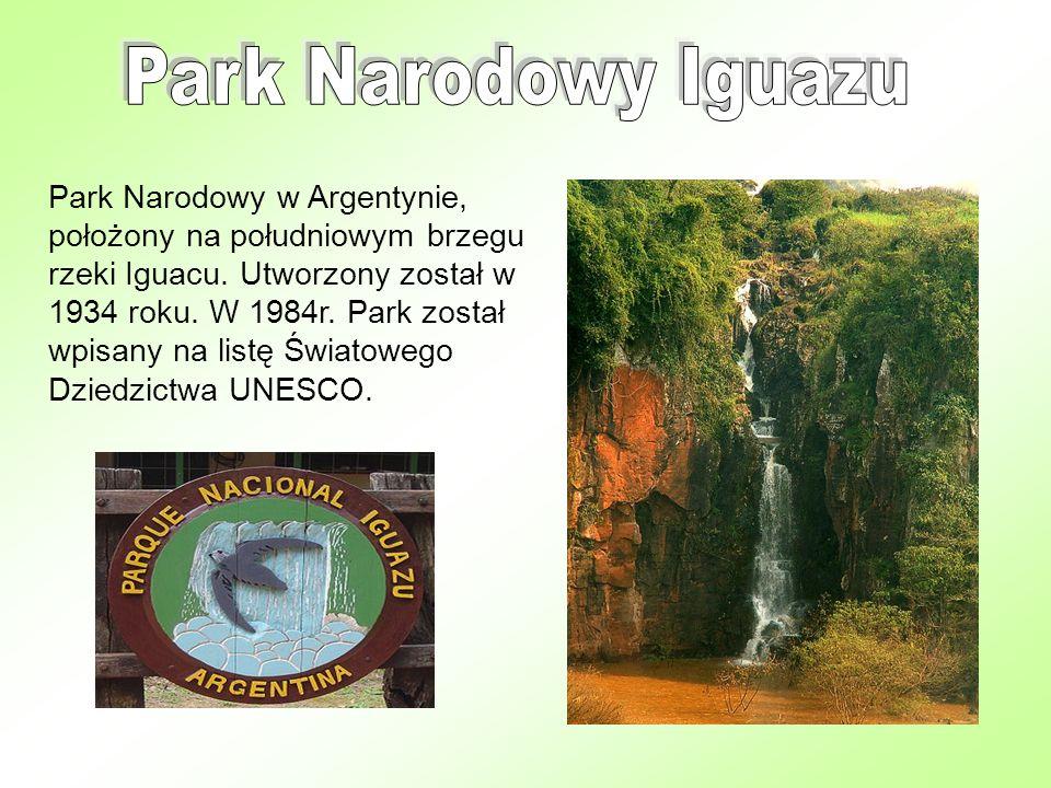 Park Narodowy Iguazu