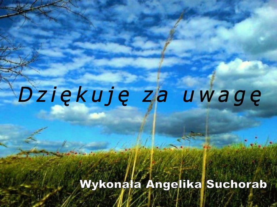 Wykonała Angelika Suchorab