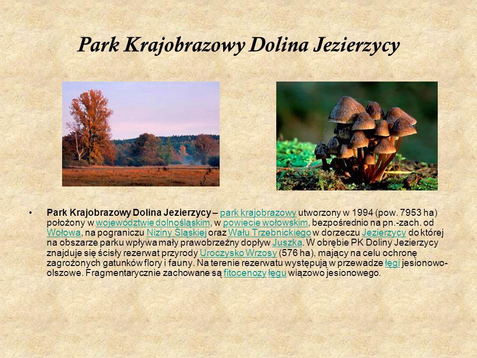 Park Krajobrazowy Dolina Jezierzycy