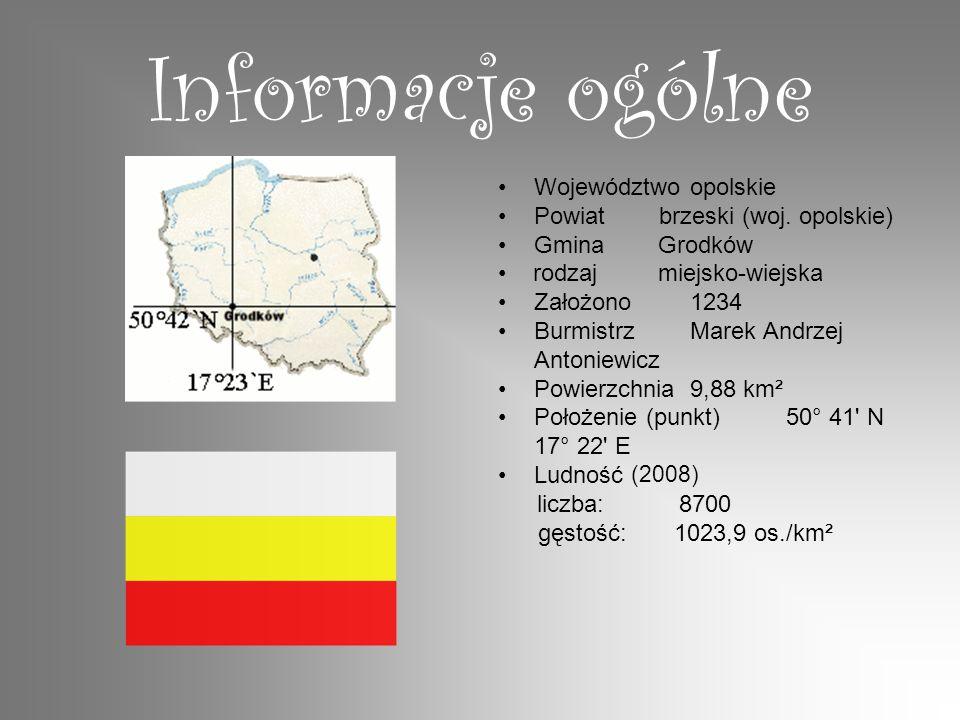 Informacje ogólne Województwo opolskie Powiat brzeski (woj. opolskie)