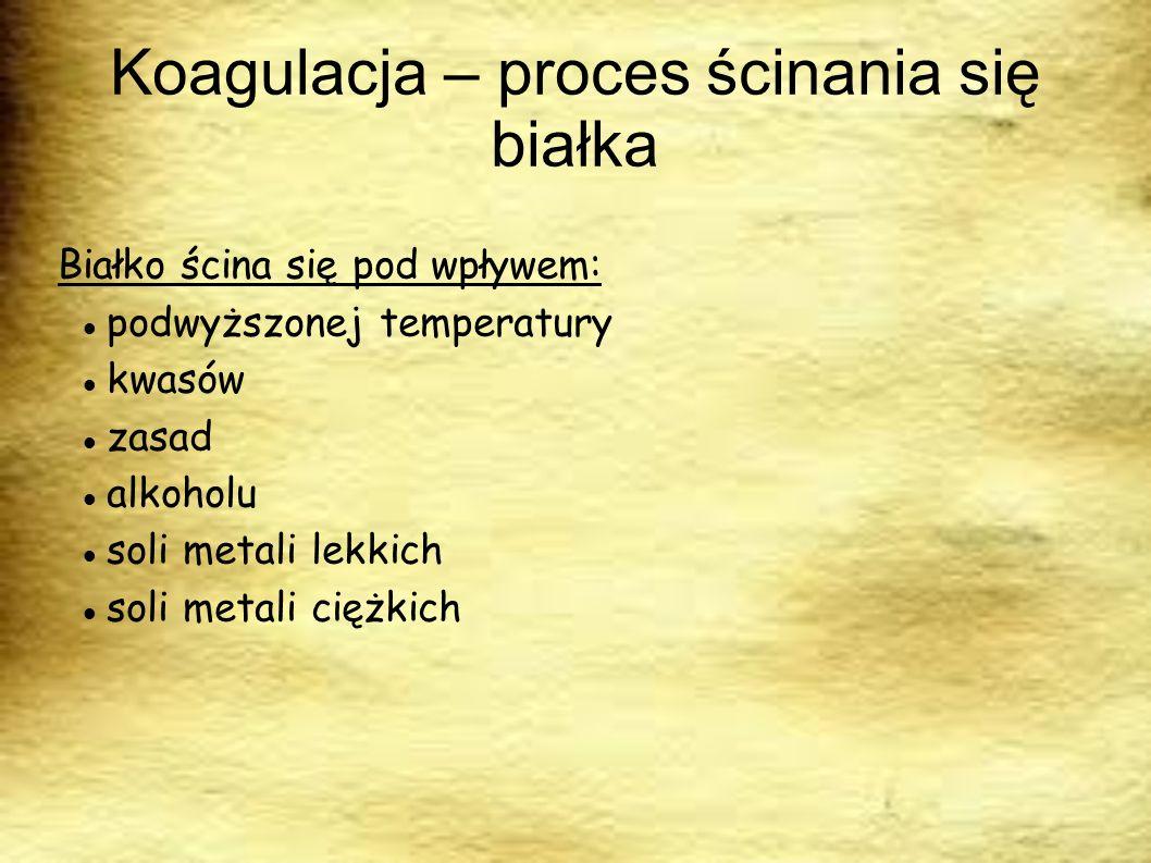 Koagulacja – proces ścinania się białka