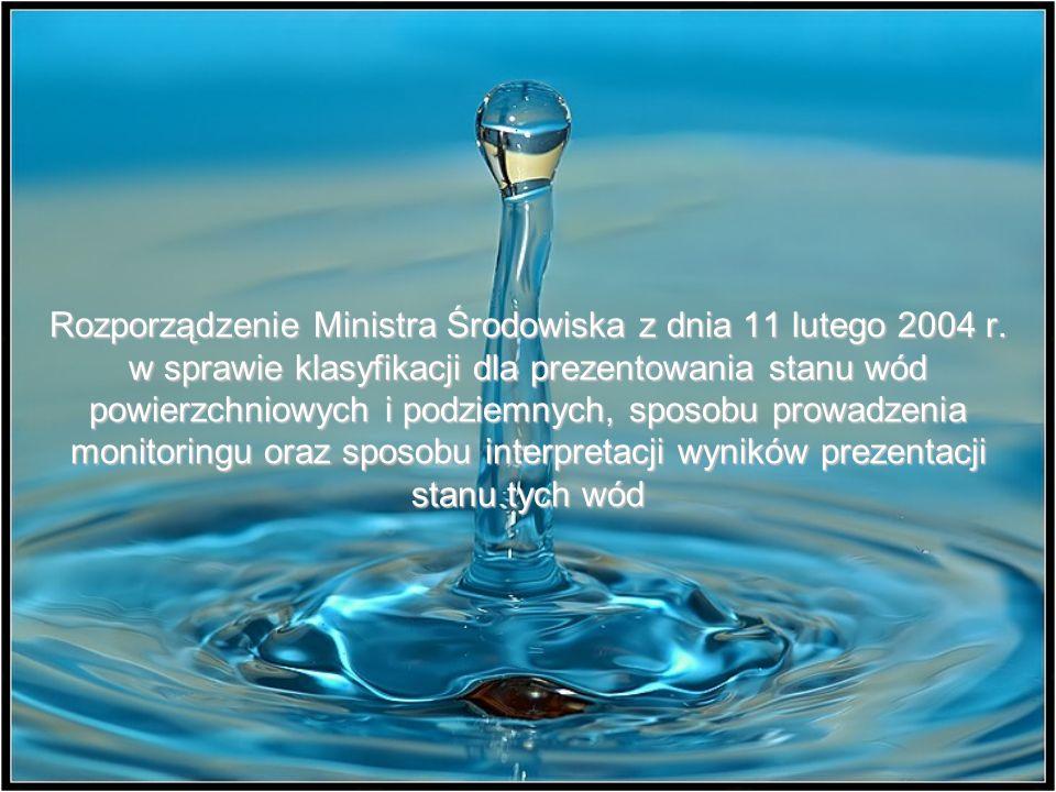 Rozporządzenie Ministra Środowiska z dnia 11 lutego 2004 r