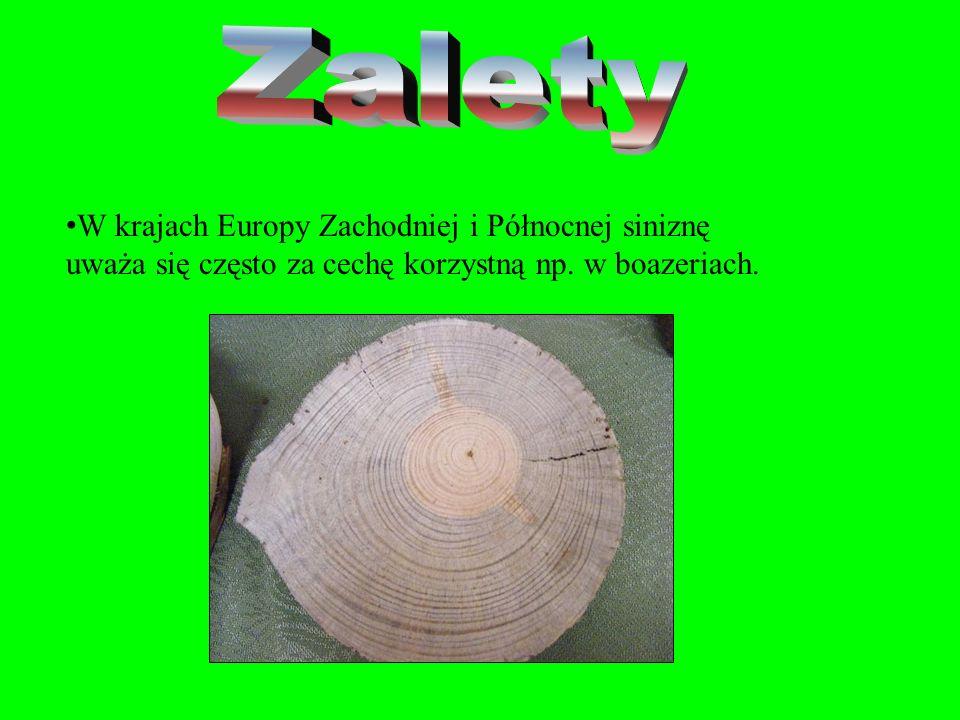 Zalety W krajach Europy Zachodniej i Północnej siniznę uważa się często za cechę korzystną np.