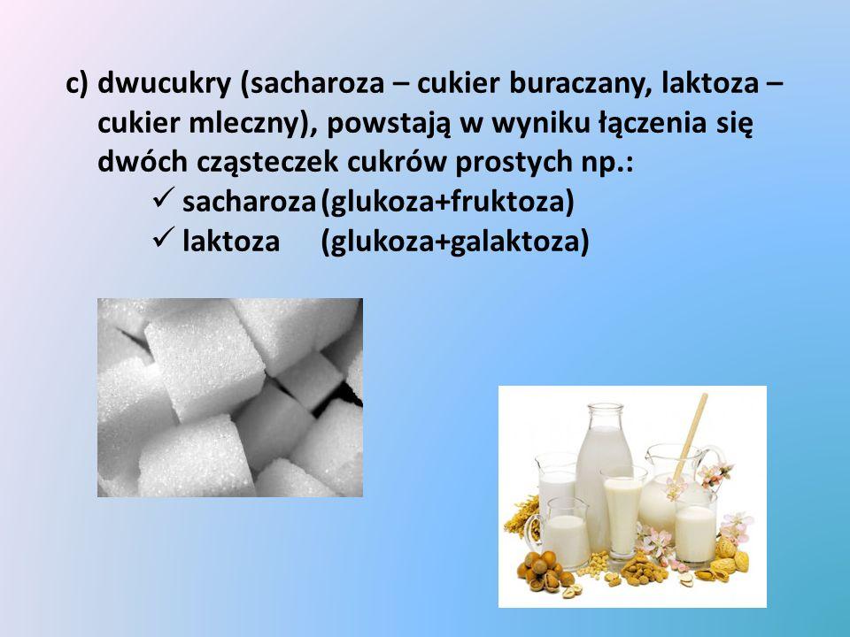 c) dwucukry (sacharoza – cukier buraczany, laktoza – cukier mleczny), powstają w wyniku łączenia się dwóch cząsteczek cukrów prostych np.: