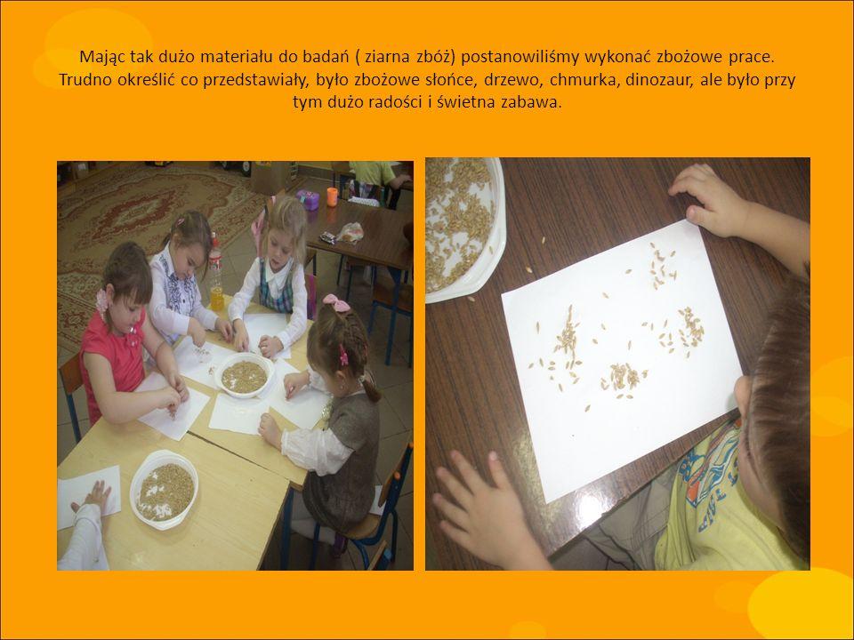 Mając tak dużo materiału do badań ( ziarna zbóż) postanowiliśmy wykonać zbożowe prace.