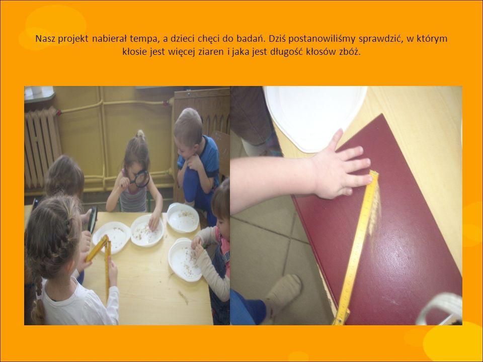 Nasz projekt nabierał tempa, a dzieci chęci do badań