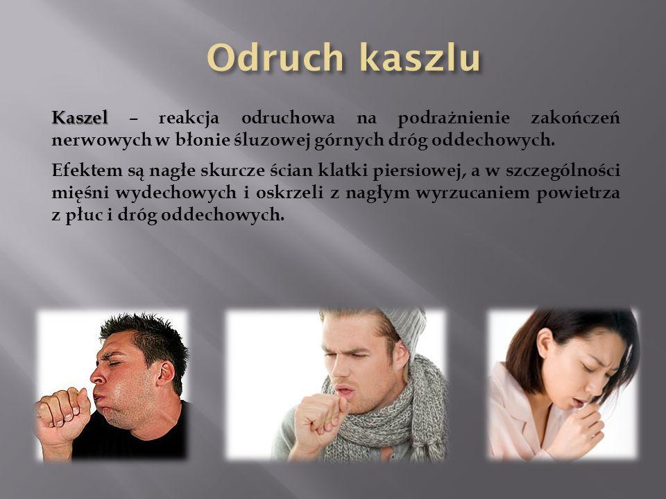 Odruch kaszlu Kaszel – reakcja odruchowa na podrażnienie zakończeń nerwowych w błonie śluzowej górnych dróg oddechowych.