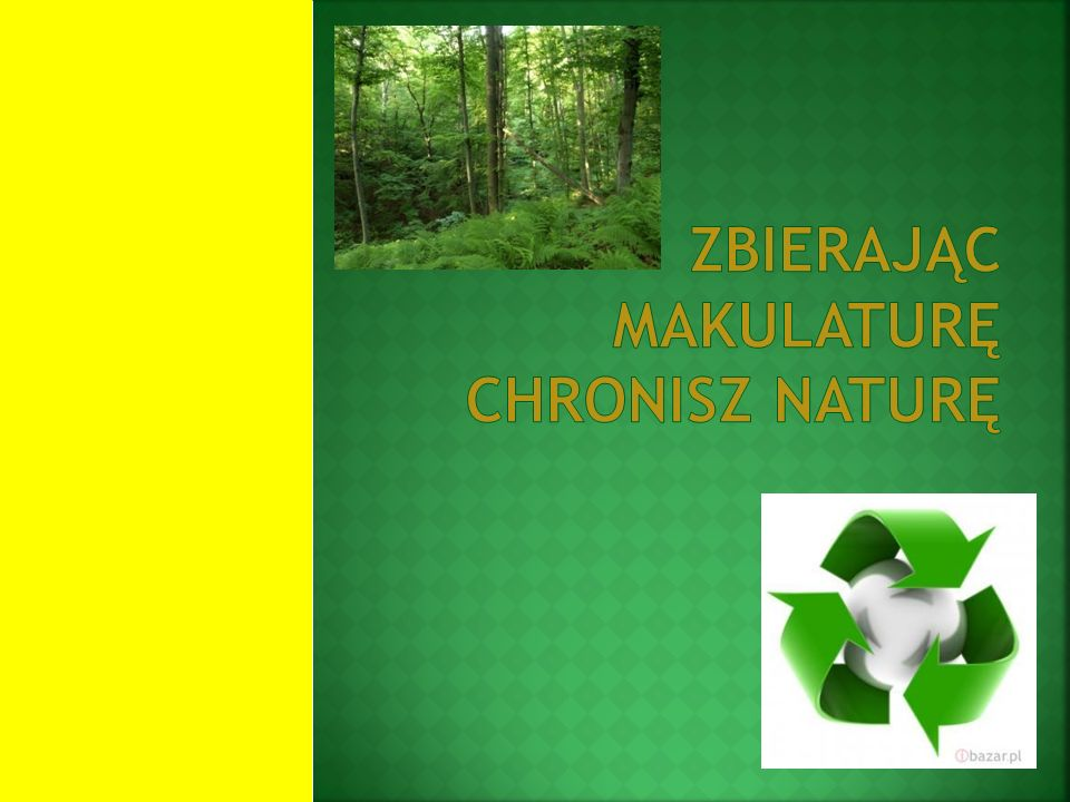 Zbierając makulaturę chronisz naturę