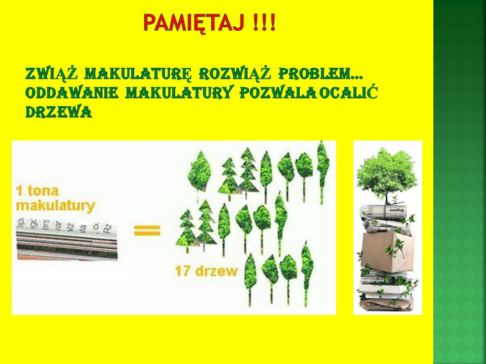 Pamiętaj !!! Zwiąż makulaturę rozwiąż problem… oddawanie makulatury pozwala ocalić drzewa
