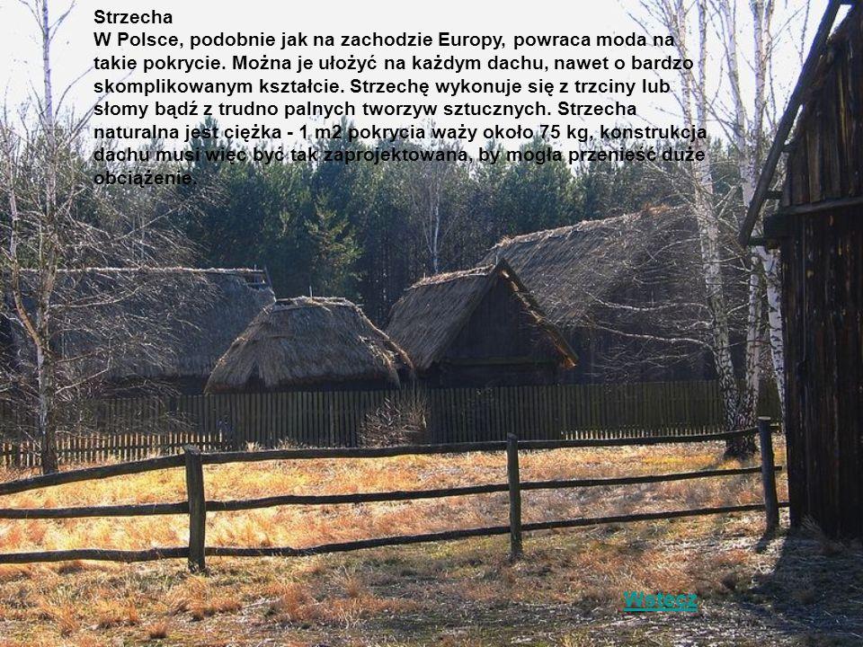 Strzecha W Polsce, podobnie jak na zachodzie Europy, powraca moda na takie pokrycie. Można je ułożyć na każdym dachu, nawet o bardzo skomplikowanym kształcie. Strzechę wykonuje się z trzciny lub słomy bądź z trudno palnych tworzyw sztucznych. Strzecha naturalna jest ciężka - 1 m2 pokrycia waży około 75 kg, konstrukcja dachu musi więc być tak zaprojektowana, by mogła przenieść duże obciążenie.