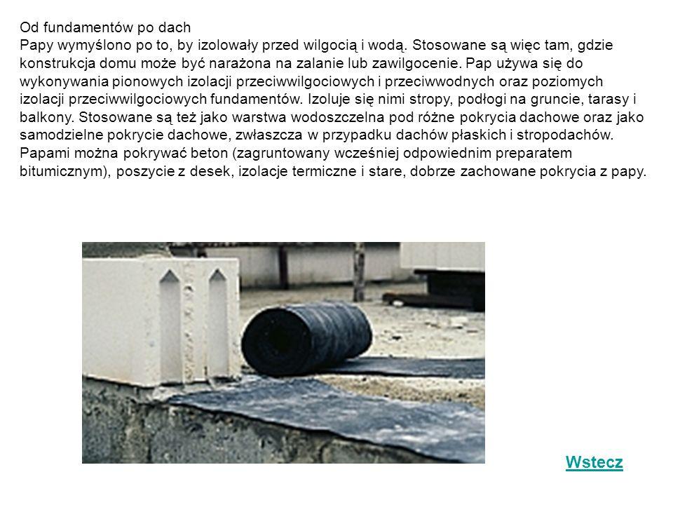 Od fundamentów po dach Papy wymyślono po to, by izolowały przed wilgocią i wodą. Stosowane są więc tam, gdzie konstrukcja domu może być narażona na zalanie lub zawilgocenie. Pap używa się do wykonywania pionowych izolacji przeciwwilgociowych i przeciwwodnych oraz poziomych izolacji przeciwwilgociowych fundamentów. Izoluje się nimi stropy, podłogi na gruncie, tarasy i balkony. Stosowane są też jako warstwa wodoszczelna pod różne pokrycia dachowe oraz jako samodzielne pokrycie dachowe, zwłaszcza w przypadku dachów płaskich i stropodachów. Papami można pokrywać beton (zagruntowany wcześniej odpowiednim preparatem bitumicznym), poszycie z desek, izolacje termiczne i stare, dobrze zachowane pokrycia z papy.