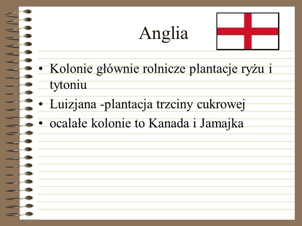 Anglia Kolonie głównie rolnicze plantacje ryżu i tytoniu