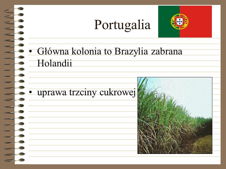 Portugalia Główna kolonia to Brazylia zabrana Holandii