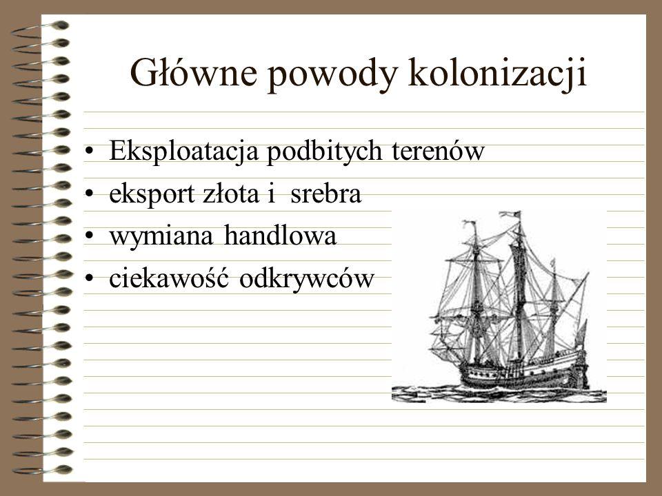 Główne powody kolonizacji
