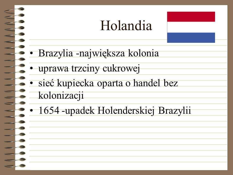 Holandia Brazylia -największa kolonia uprawa trzciny cukrowej