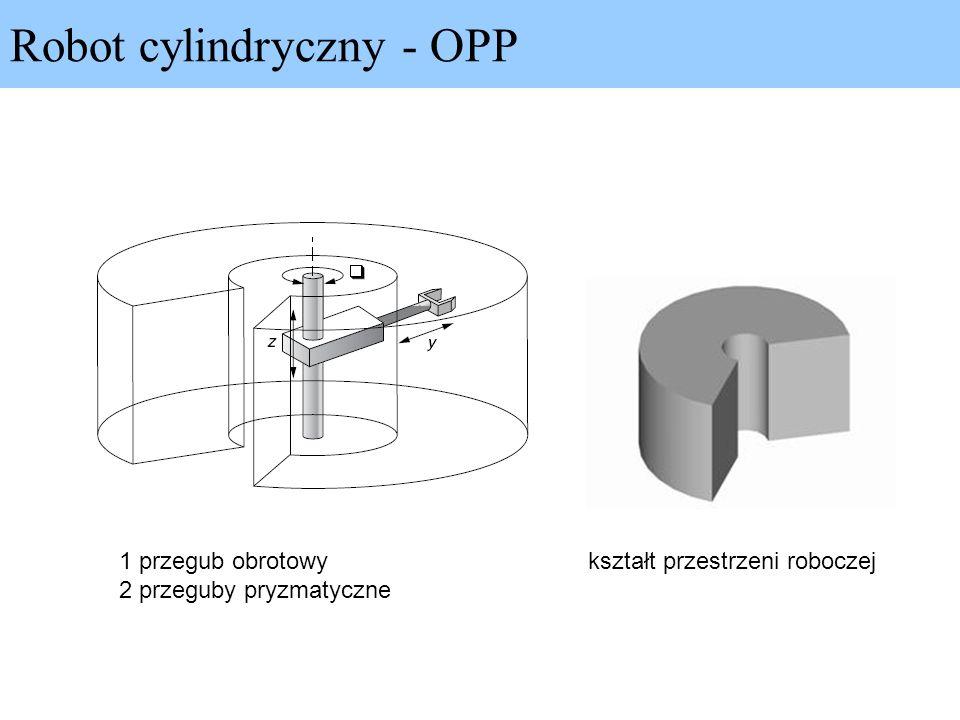 Robot cylindryczny - OPP