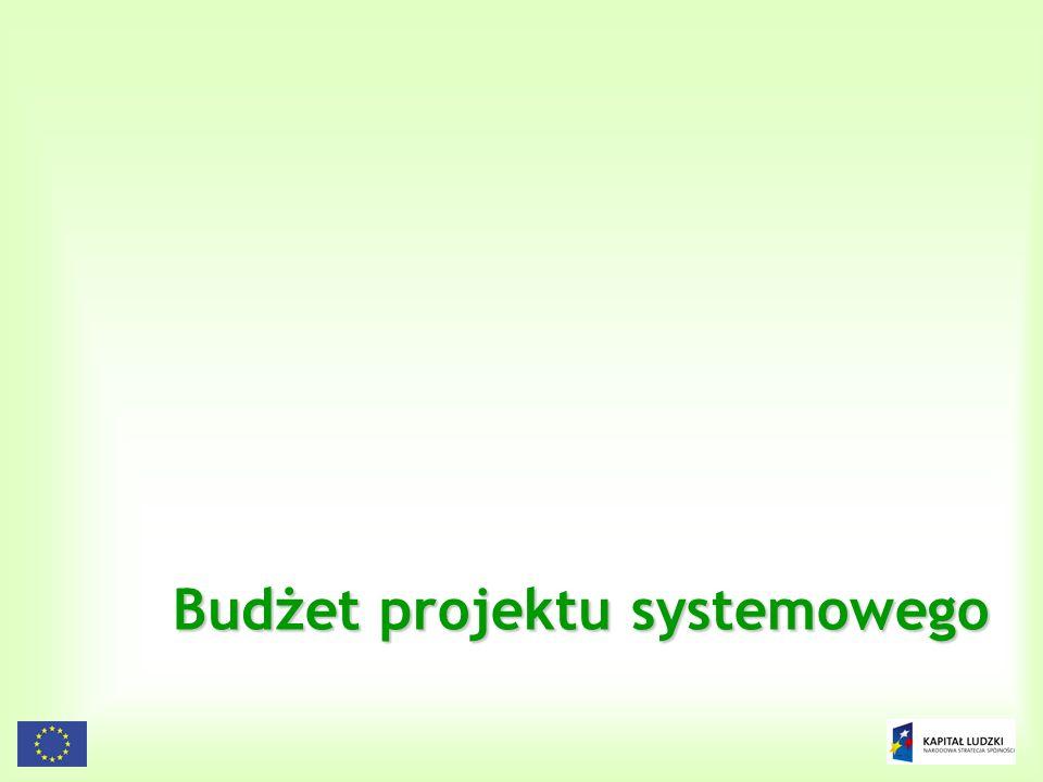 Budżet projektu systemowego