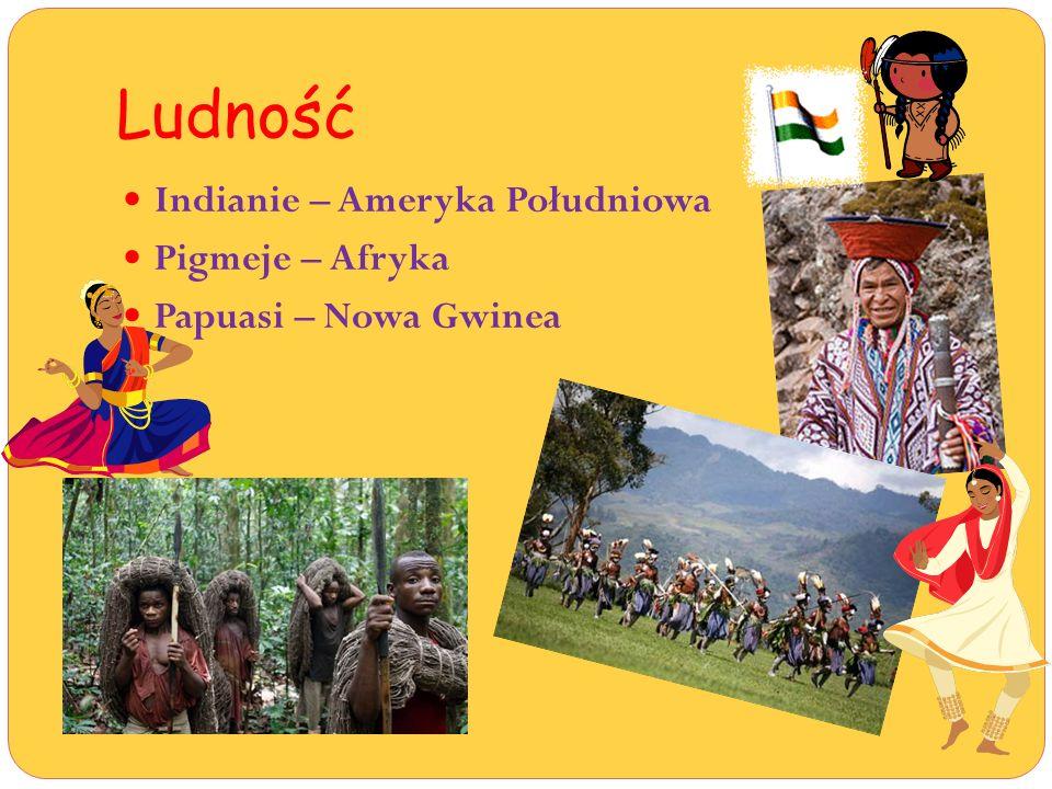 Ludność Indianie – Ameryka Południowa Pigmeje – Afryka