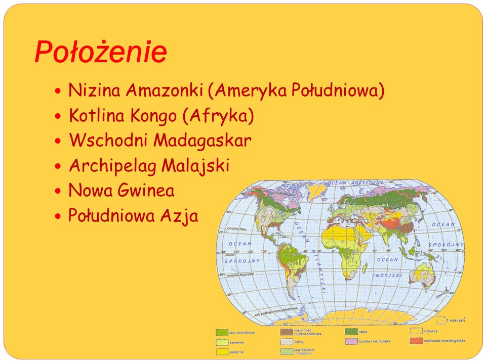 Położenie Nizina Amazonki (Ameryka Południowa) Kotlina Kongo (Afryka)