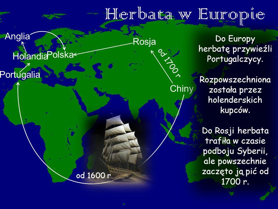 Herbata w Europie Anglia Rosja Polska Holandia Portugalia Chiny