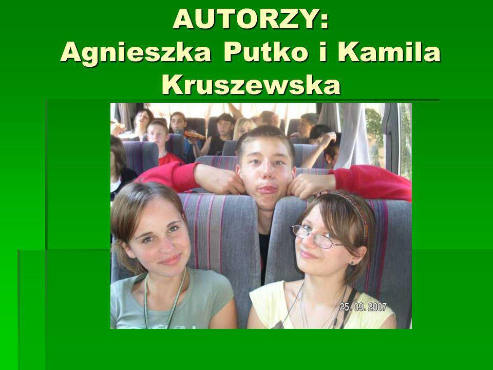 AUTORZY: Agnieszka Putko i Kamila Kruszewska