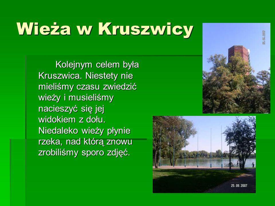 Wieża w Kruszwicy