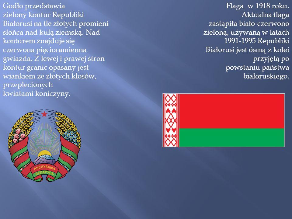 Godło przedstawia zielony kontur Republiki Białorusi na tle złotych promieni słońca nad kulą ziemską. Nad konturem znajduje się czerwona pięcioramienna gwiazda. Z lewej i prawej stron kontur granic opasany jest wiankiem ze złotych kłosów, przeplecionych kwiatami koniczyny.