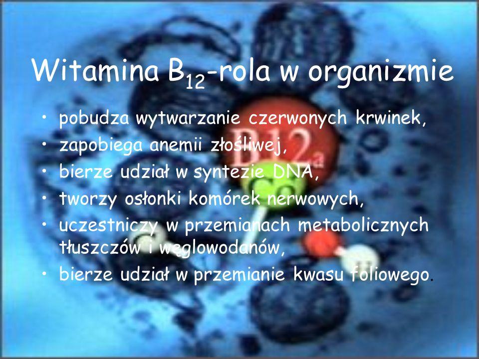 Witamina B12-rola w organizmie