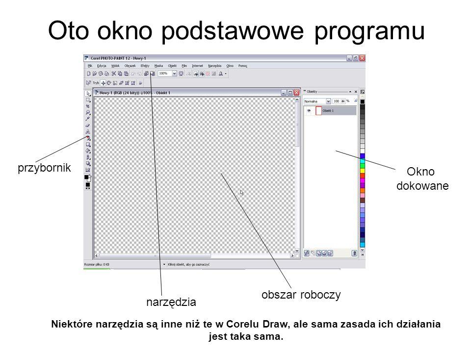 Oto okno podstawowe programu
