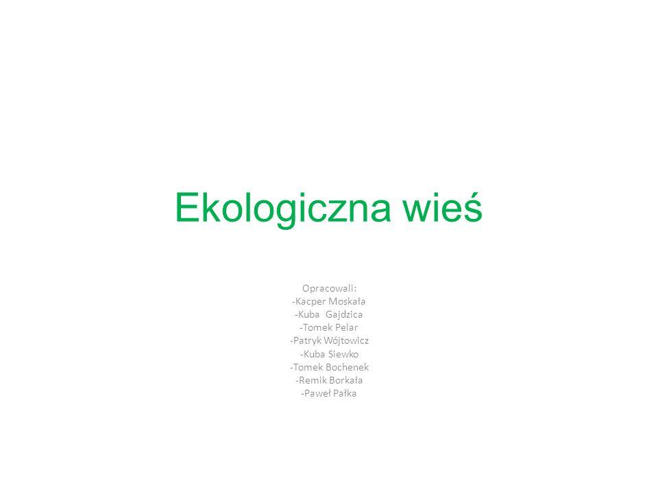 Ekologiczna wieś Opracowali: -Kacper Moskała -Kuba Gajdzica