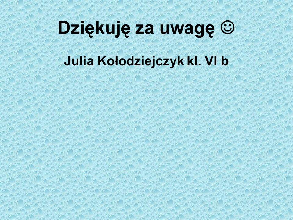 Julia Kołodziejczyk kl. VI b