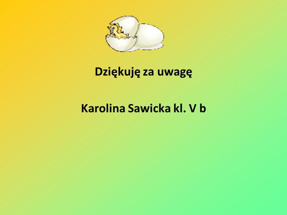 Dziękuję za uwagę Karolina Sawicka kl. V b