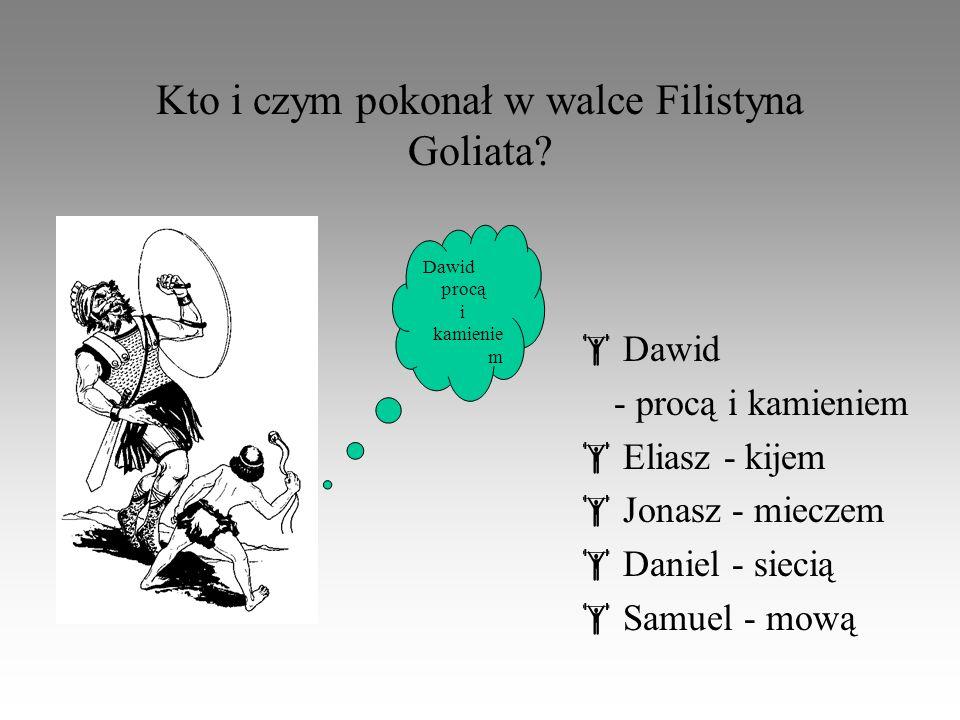 Kto i czym pokonał w walce Filistyna Goliata