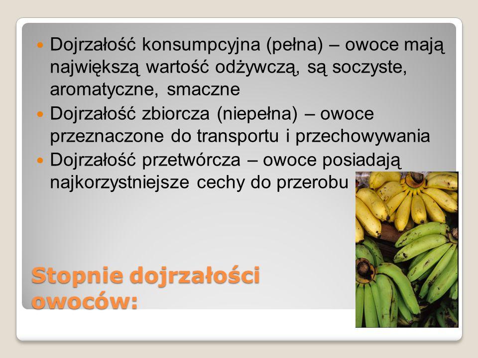 Stopnie dojrzałości owoców: