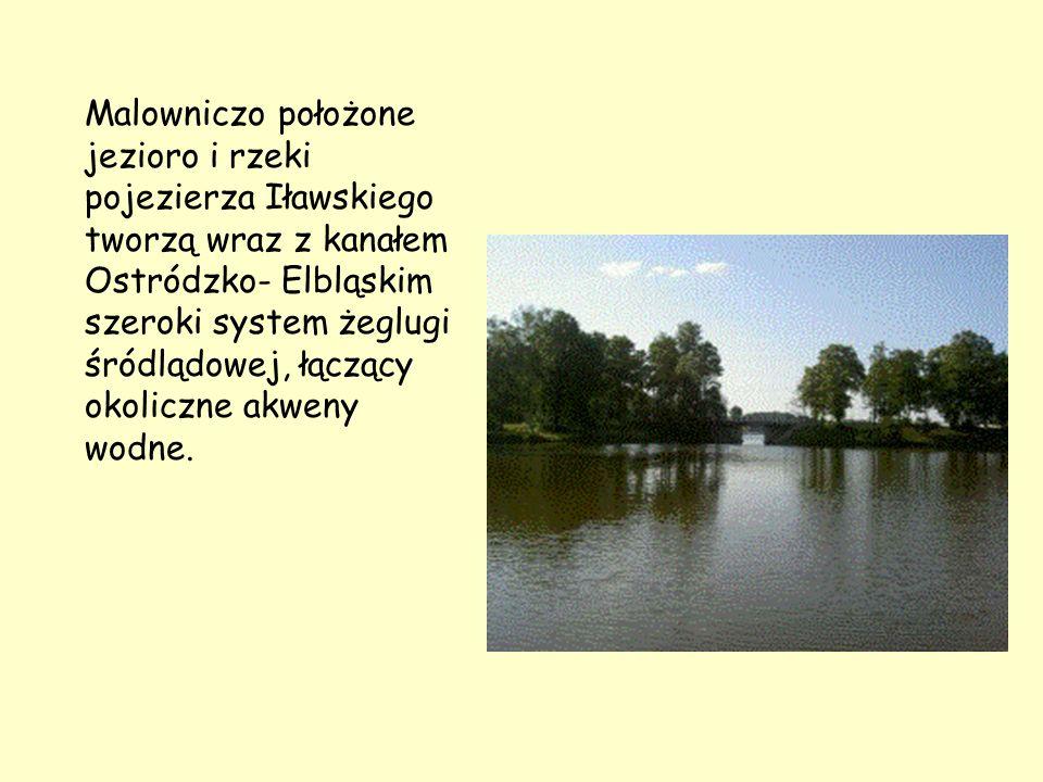 Malowniczo położone jezioro i rzeki pojezierza Iławskiego tworzą wraz z kanałem Ostródzko- Elbląskim szeroki system żeglugi śródlądowej, łączący okoliczne akweny wodne.