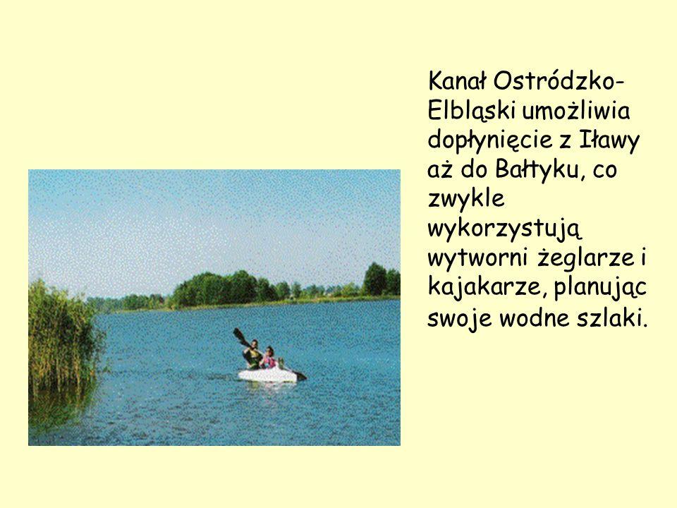 Kanał Ostródzko- Elbląski umożliwia dopłynięcie z Iławy aż do Bałtyku, co zwykle wykorzystują wytworni żeglarze i kajakarze, planując swoje wodne szlaki.