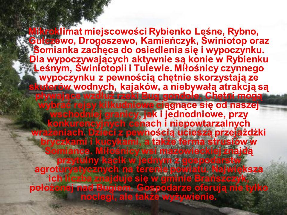 Mikroklimat miejscowości Rybienko Leśne, Rybno, Gulczewo, Drogoszewo, Kamieńczyk, Świniotop oraz Somianka zachęca do osiedlenia się i wypoczynku.