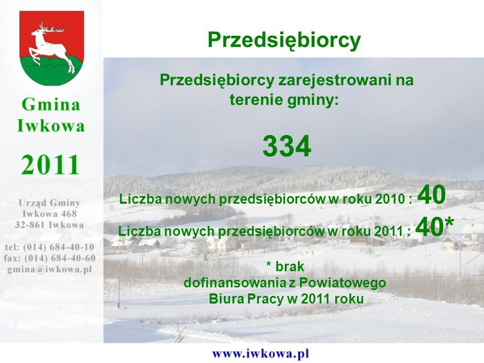 334 Przedsiębiorcy Przedsiębiorcy zarejestrowani na terenie gminy: